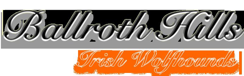 ballroth-hills-irish-wolfhound.de